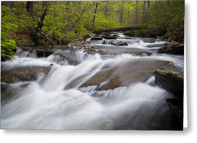 Devils Den Greeting Cards - Cheaha Slide Greeting Card by Drew Senter