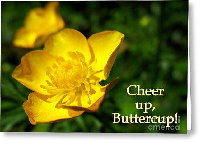 Cheer Up Buttercup Greeting Card by Patti Whitten