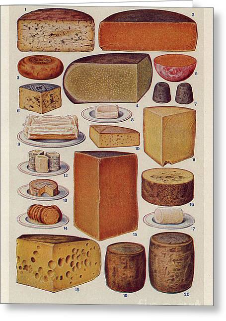 Twentieth Century Greeting Cards - Cheese 1900s Uk Isabella Beeton  Mrs Greeting Card by The Advertising Archives