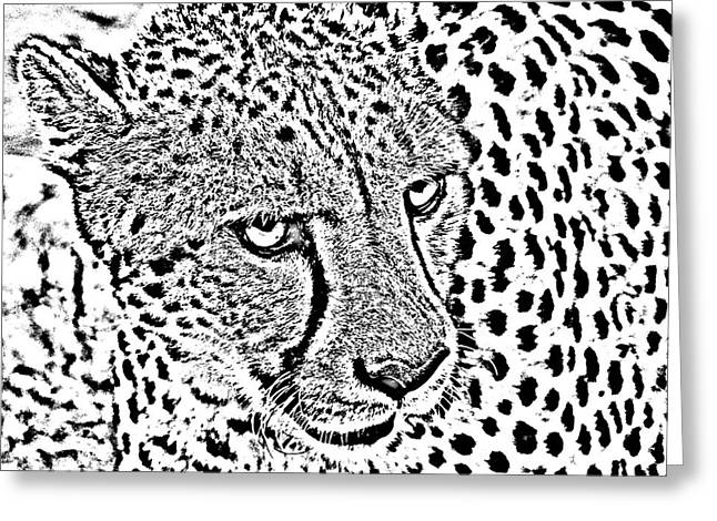Photocopy Greeting Cards - Cheetah 3 Quarters Macro Profile Black and White Digital Art Square Format Greeting Card by Shawn O