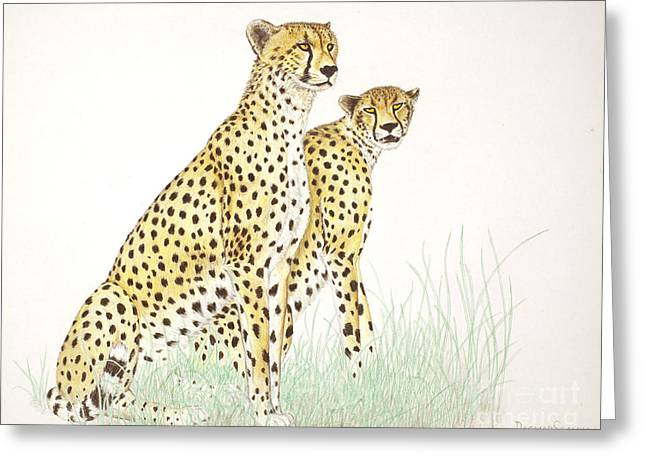 Killer Drawings Greeting Cards - Cheetah Couple Greeting Card by Dag Sla