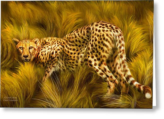 Cheetah Stare Greeting Card by Carol Cavalaris