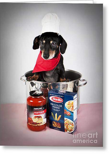 Black And Tan Dachshund Greeting Cards - Chef Boyardee Doggie Greeting Card by Denise Oldridge