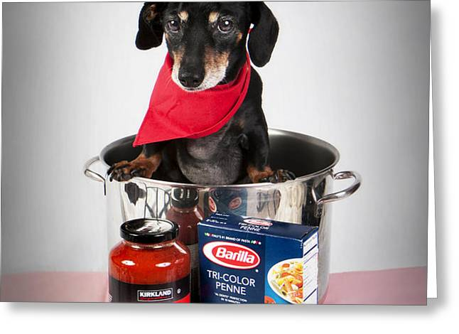 Chef Boyardee Doggie Greeting Card by Denise Oldridge