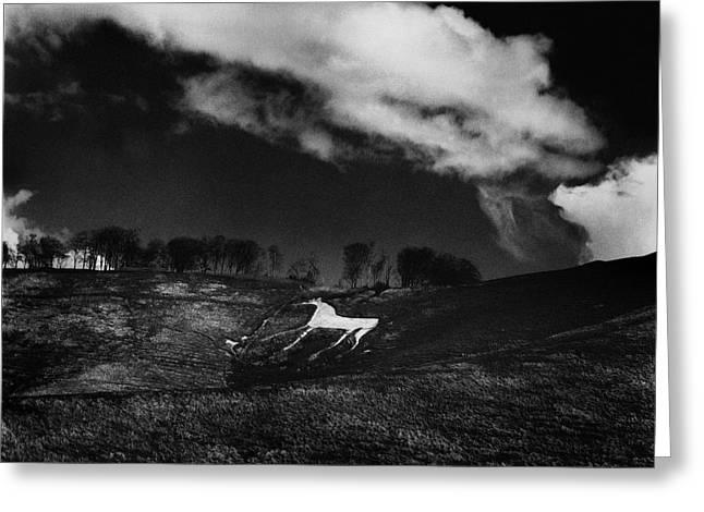 Mark Preston Greeting Cards - Cherhill White Horse Wiltshire Greeting Card by Mark Preston