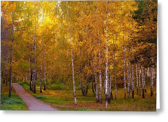 Autumn Splendor Greeting Cards - Cherished by Sun Greeting Card by Jenny Rainbow