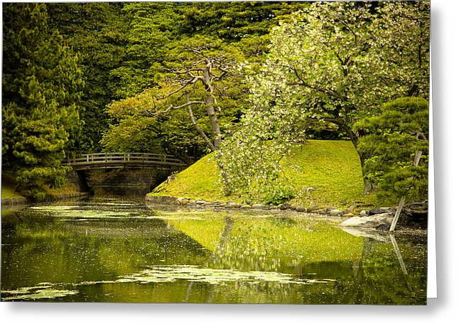 Green Forest Greeting Cards - Cherry Blossom Japanese Garden Greeting Card by Sebastian Musial