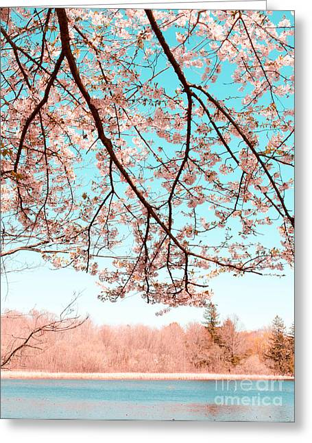 Park Scene Mixed Media Greeting Cards - Cherry Blossom on the Lake Greeting Card by Andrea Anderegg