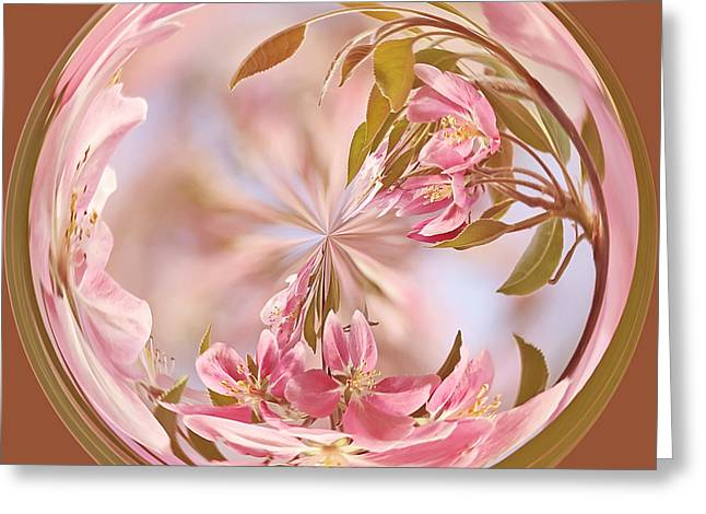 Cherry Blossom Orb Greeting Card by Kim Hojnacki
