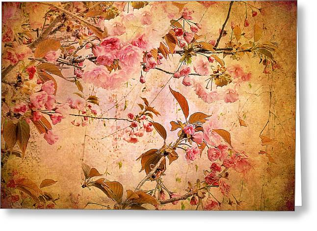 Textured Floral Greeting Cards - Cherry Blossom Tapestry Greeting Card by Jessica Jenney