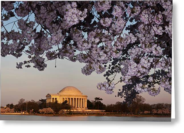 National Landmark Greeting Cards - Cherry Blossom Tree With A Memorial Greeting Card by Panoramic Images