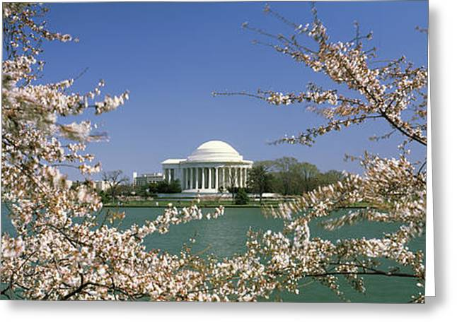 Flower Memorial Photography Greeting Cards - Cherry Blossom With Memorial Greeting Card by Panoramic Images