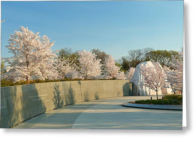 Cherry Blossoms 2013 - 022 Greeting Card by Metro DC Photography