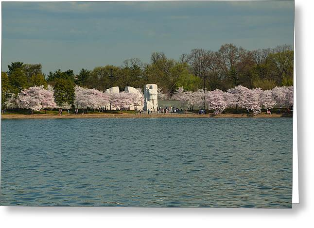 Architecture Greeting Cards - Cherry Blossoms 2013 - 055 Greeting Card by Metro DC Photography
