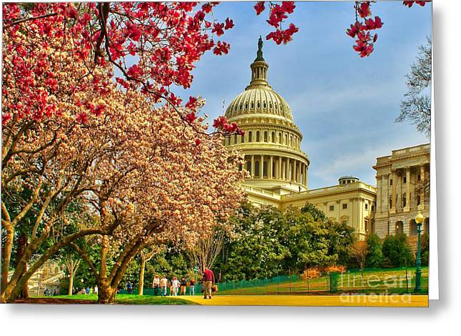 Capitol Flowers Greeting Cards - Cherry Blossoms at the Capitol Greeting Card by Nick Zelinsky