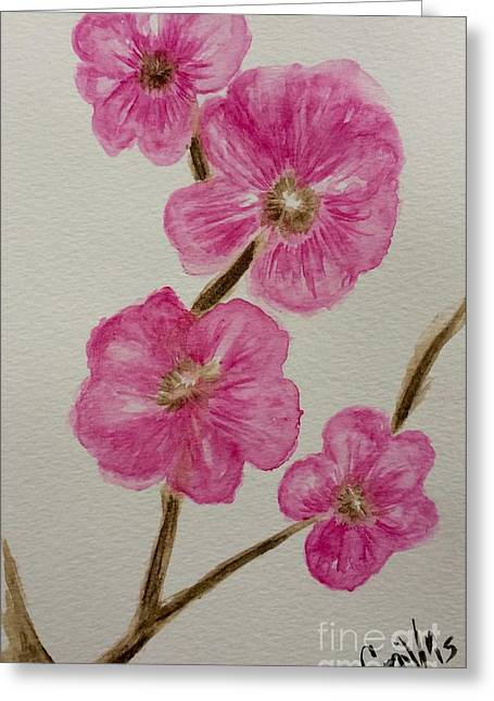 Cherry Blossoms Mixed Media Greeting Cards - Cherry blossoms blooming  Greeting Card by Gail Nandlal