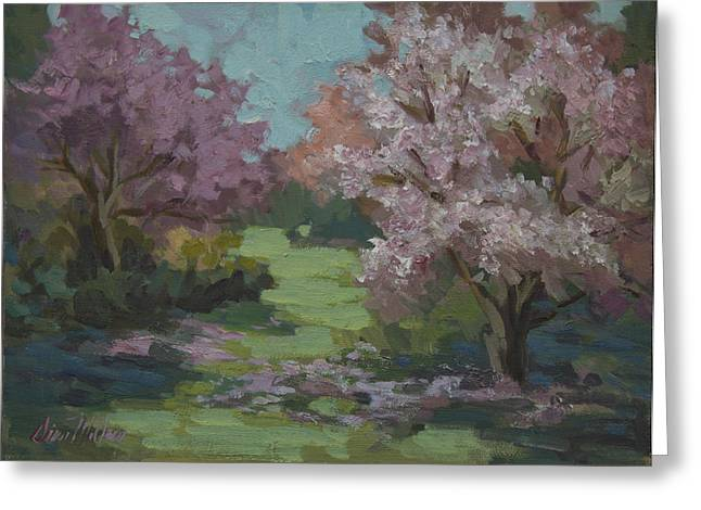 Orchard Greeting Cards - Cherry Blossoms Greeting Card by Diane McClary