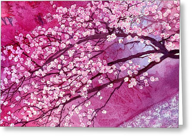 Sakura Paintings Greeting Cards - Cherry Blossoms Greeting Card by Hailey E Herrera