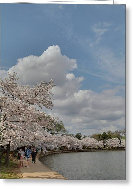 Cherry Blossoms - Washington Dc - 011371 Greeting Card by DC Photographer