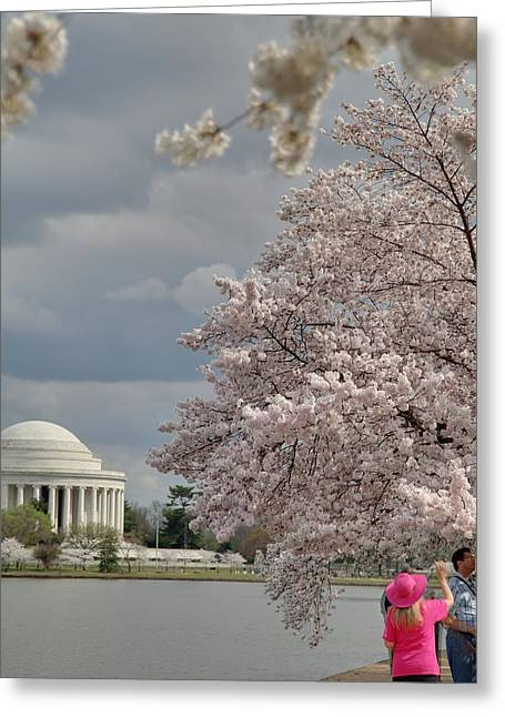 Sightseeing Greeting Cards - Cherry Blossoms with Jefferson Memorial - Washington DC - 011311 Greeting Card by DC Photographer