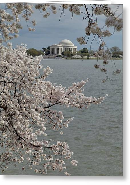 Destination Greeting Cards - Cherry Blossoms with Jefferson Memorial - Washington DC - 011321 Greeting Card by DC Photographer