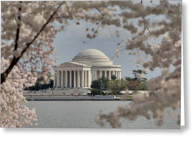 Usa Photographs Greeting Cards - Cherry Blossoms with Jefferson Memorial - Washington DC - 011324 Greeting Card by DC Photographer