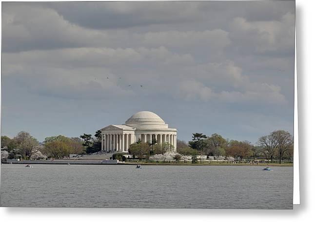 Cherry Greeting Cards - Cherry Blossoms with Jefferson Memorial - Washington DC - 011329 Greeting Card by DC Photographer