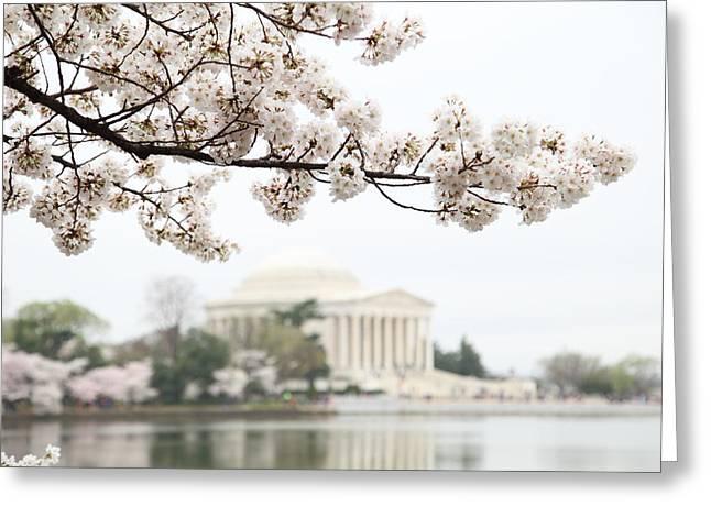 Destinations Photographs Greeting Cards - Cherry Blossoms with Jefferson Memorial - Washington DC - 011346 Greeting Card by DC Photographer