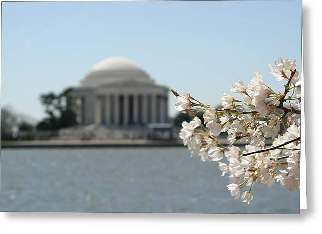 President Greeting Cards - Cherry Blossoms with Jefferson Memorial - Washington DC - 01136 Greeting Card by DC Photographer
