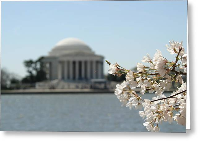Jefferson Greeting Cards - Cherry Blossoms with Jefferson Memorial - Washington DC - 01137 Greeting Card by DC Photographer