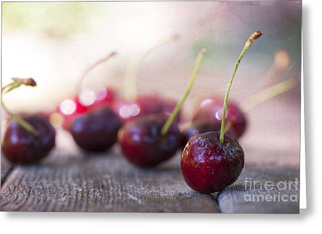 Bokeh Greeting Cards - Cherry Delites Greeting Card by Juli Scalzi