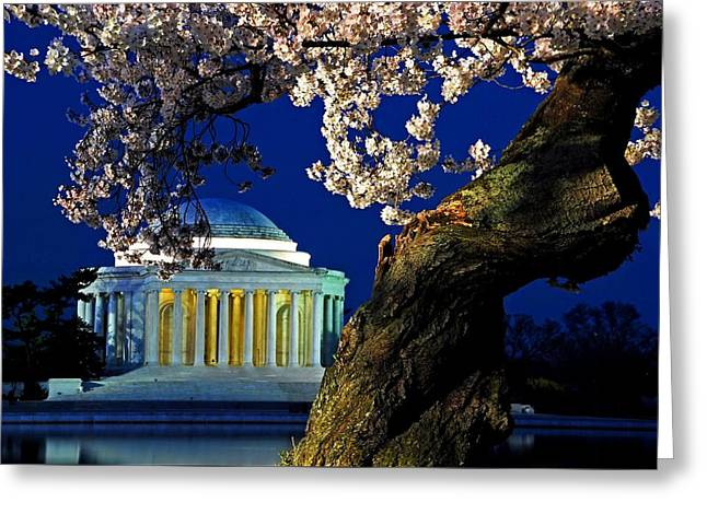 Founders Tree Greeting Cards - Cherry tree framing the Jefferson Memorial Greeting Card by Bill Jonscher