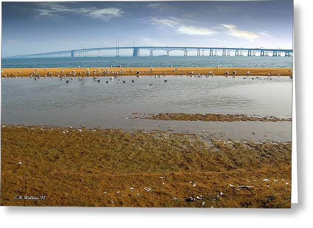 Sandy Point Park Greeting Cards - Chesapeake Bay Bridge Greeting Card by Brian Wallace