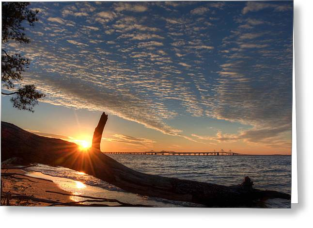 Recently Sold -  - Bay Bridge Greeting Cards - Chesapeake Bay Bridge Sunset Greeting Card by Mark  Dignen