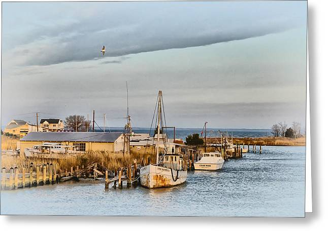 St. Michael Greeting Cards - Chesapeake Fishing Boats Greeting Card by Bill Cannon