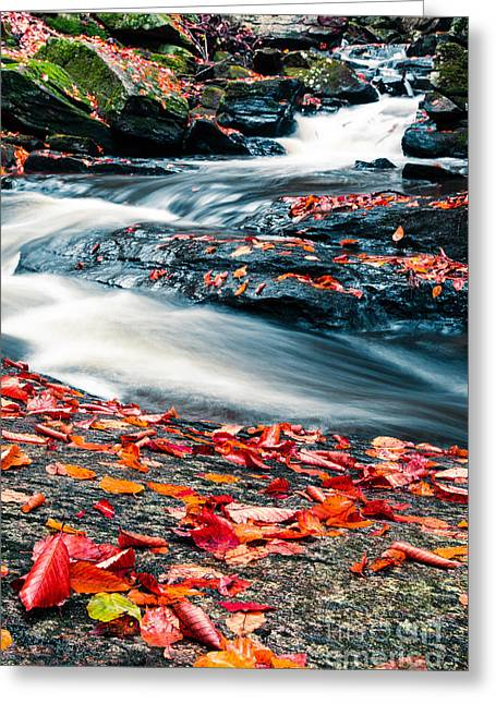 Gorges Greeting Cards - Chesterfield Gorge New Hampshire Greeting Card by Edward Fielding
