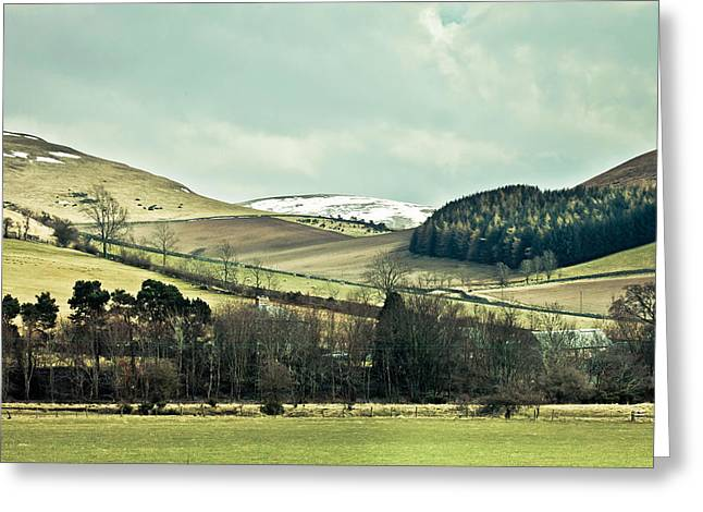 Vale Greeting Cards - Cheviot Hills Greeting Card by Tom Gowanlock
