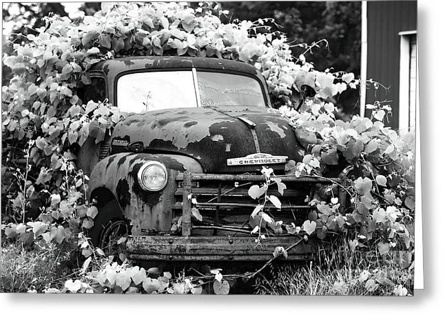 Chevrolet Pickup Truck Greeting Cards - Chevrolet History Greeting Card by John Rizzuto