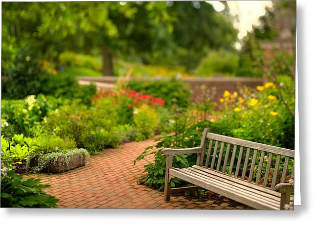 Chicago Botanic Garden Greeting Cards - Chicago Botanic Garden Bench Greeting Card by Steve Gadomski