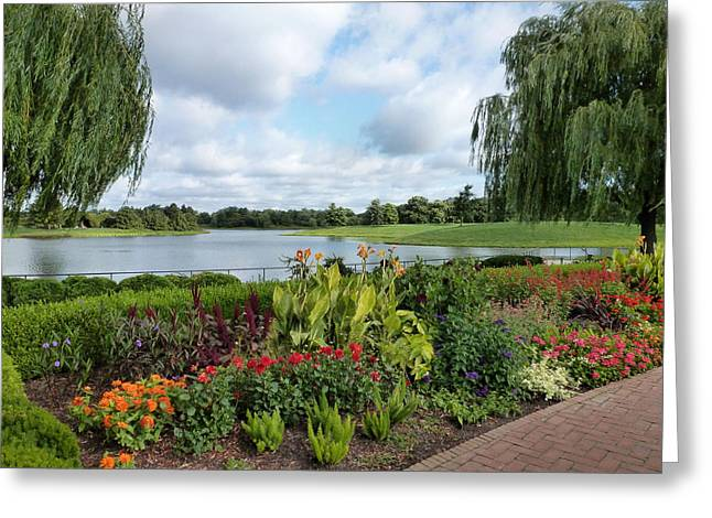 Weeping Greeting Cards - Chicago Botanical Gardens - 95 Greeting Card by Ely Arsha