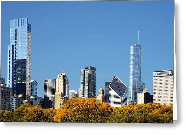 Hard Greeting Cards - Chicago skyline from Millenium Park III Greeting Card by Christine Till