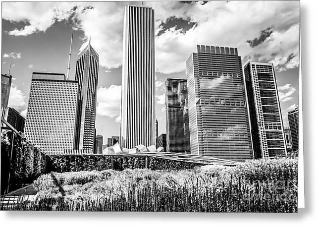 Chicago Skyline Lurie Garden Black And White Picture Greeting Card by Paul Velgos