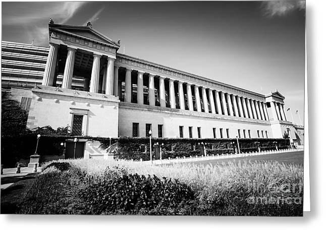 Roman Soldier Greeting Cards - Chicago Solider Field Black and White Picture Greeting Card by Paul Velgos