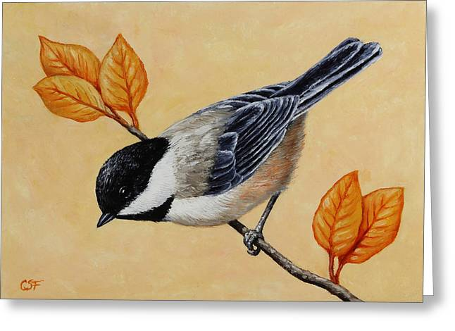 Small Bird Greeting Cards - Chickadee and Autumn Leaves Greeting Card by Crista Forest