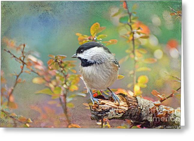 Chickadee Greeting Cards Greeting Cards - Chickadee and the Hiding Caterpillar Greeting Card by Debbie Portwood