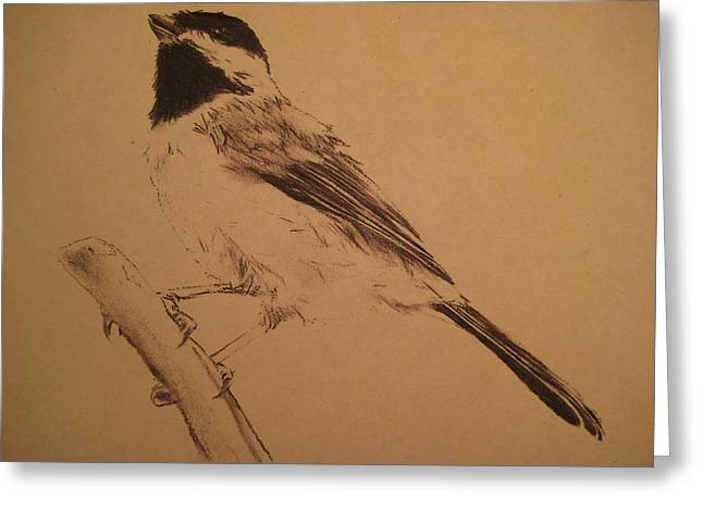 Photocopy Greeting Cards - Chickadee Greeting Card by Arianna Sedota