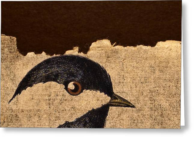 Torn Greeting Cards - Chickadee Greeting Card by Carol Leigh