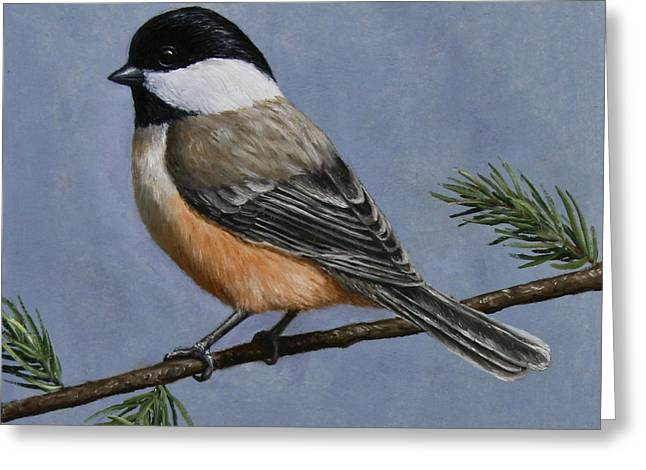 Song Birds Greeting Cards - Chickadee Charm Greeting Card by Crista Forest