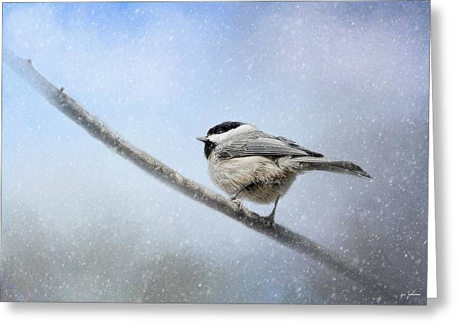 Chickadee In The Snow Greeting Card by Jai Johnson