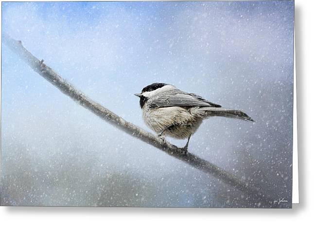Chickadee Greeting Cards - Chickadee In The Snow Greeting Card by Jai Johnson